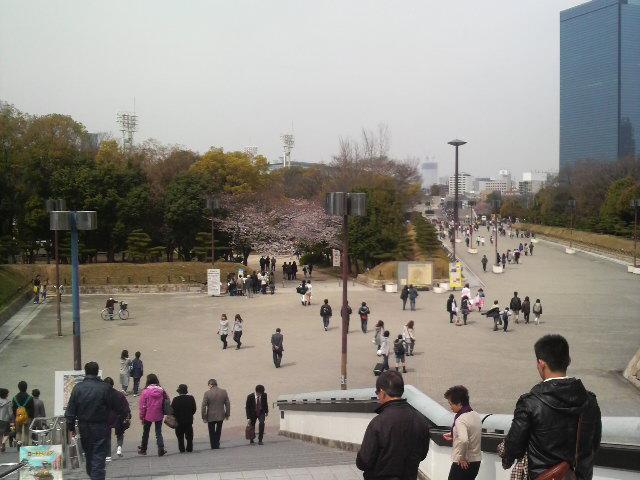 今日の大阪城