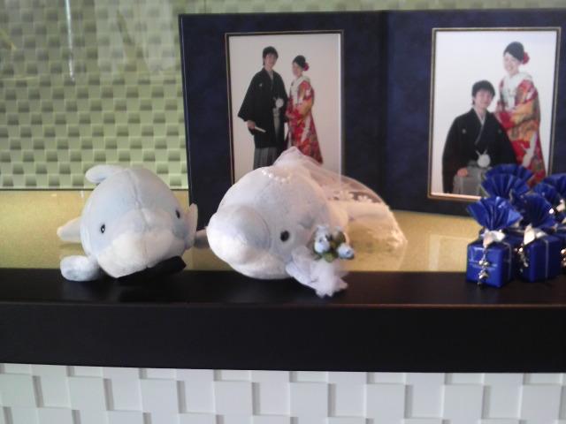 今日の披露宴『テラスオブパシフィック神戸』
