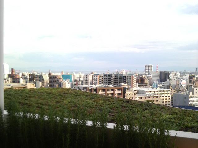 神戸でナイトウェディング