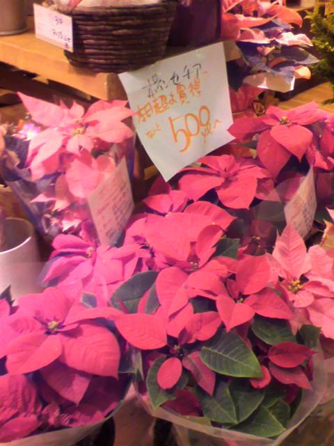 【クリスマスといえば】